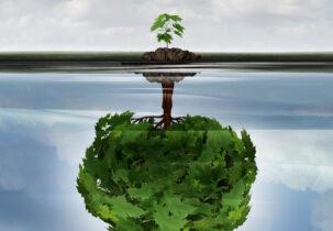 Laat je mindset groeien